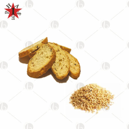 Crostini Proteici ai Semi